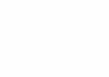 logo blanc mini