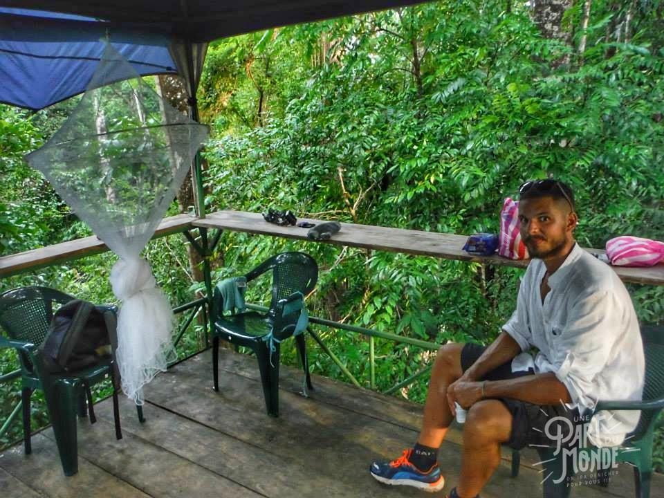 Plateforme Pacheco dans les arbres au Costa Rica en plein milieu de la forêt, parmi les singes hurleurs et les aras - Drake Bay, Costa Rica