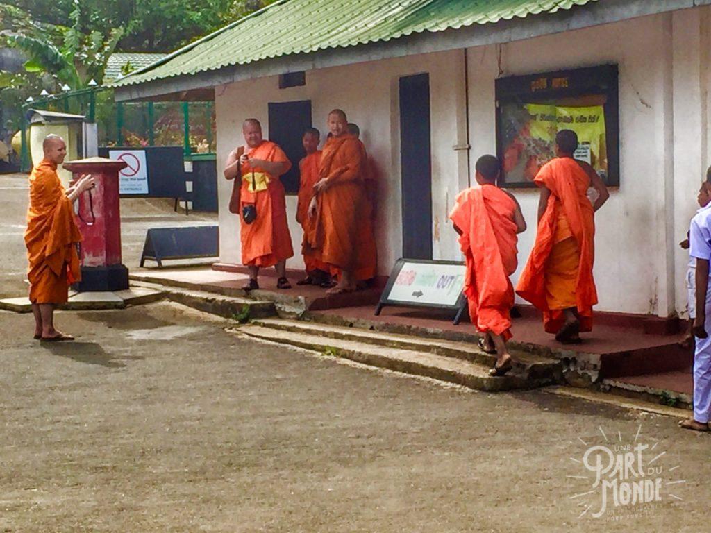 moines-dambulla