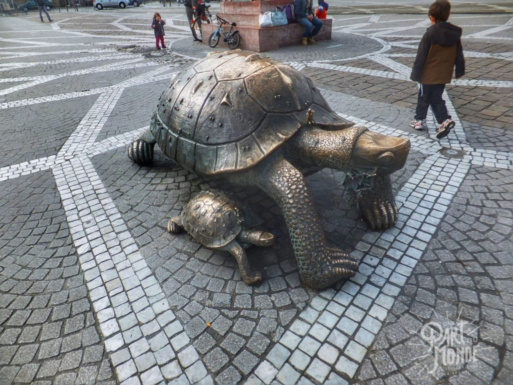 tortues-bordeaux