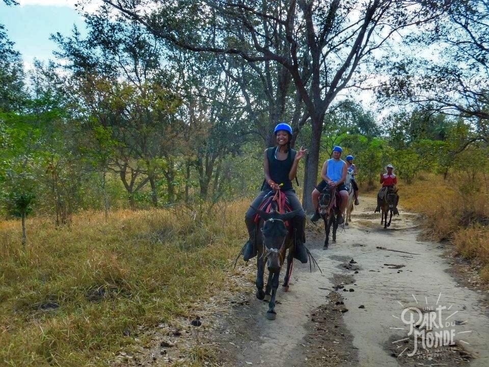 rincon de la vieja equitation
