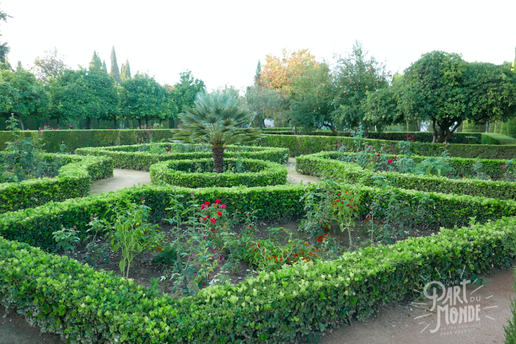 jardin alcazar cordoue 4