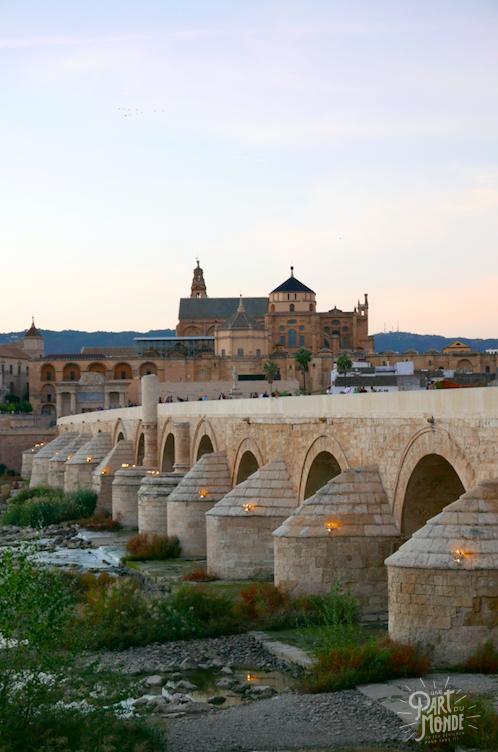 vue mezquita depuis le pont cordoue
