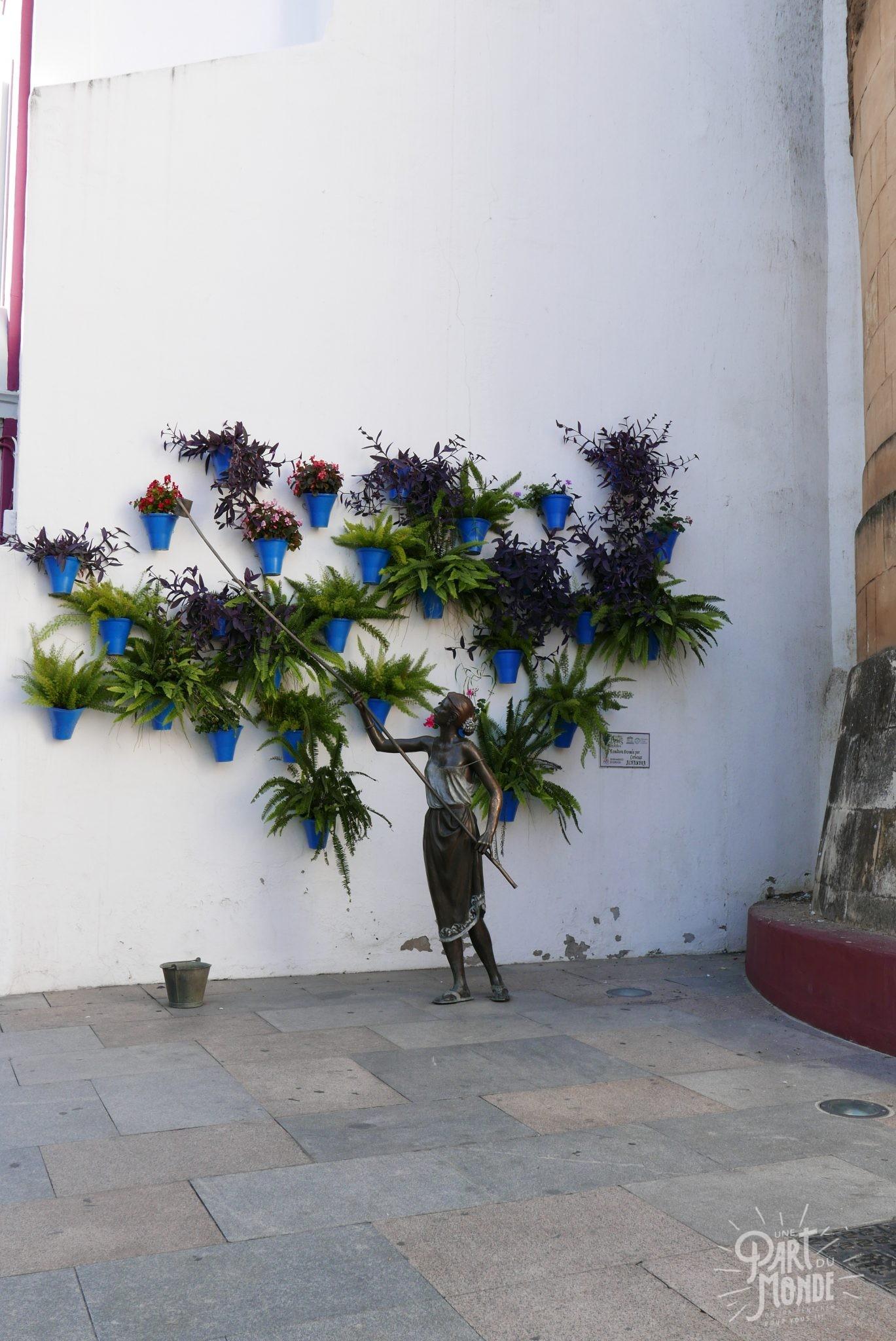 mur fleurs cordoue