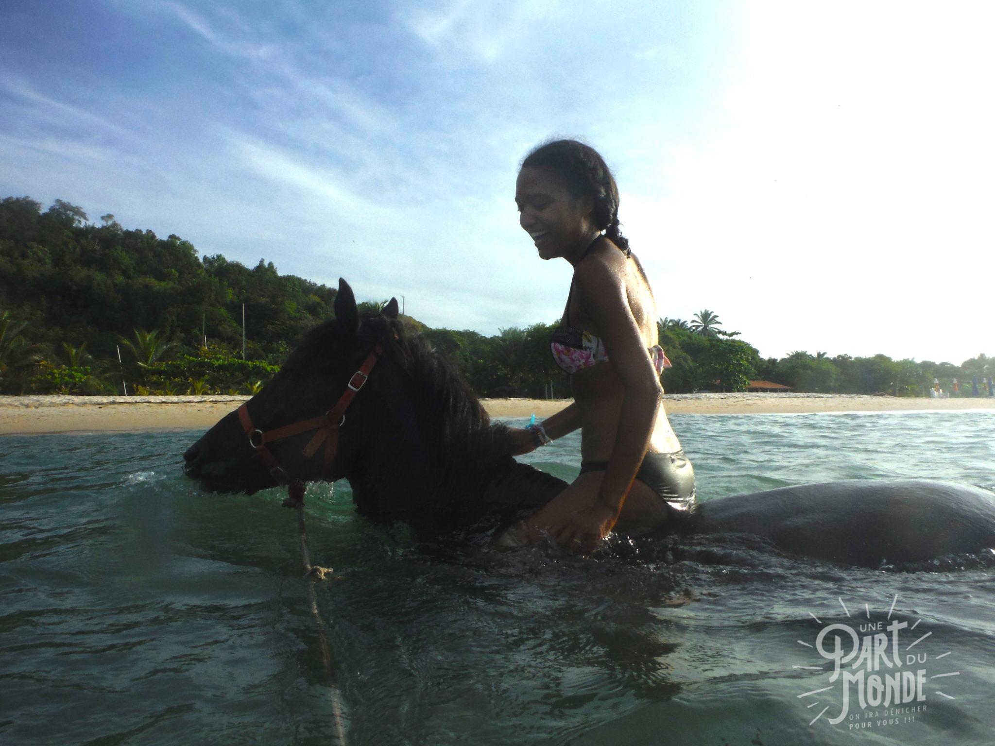 île de tinharé nage cheval 2