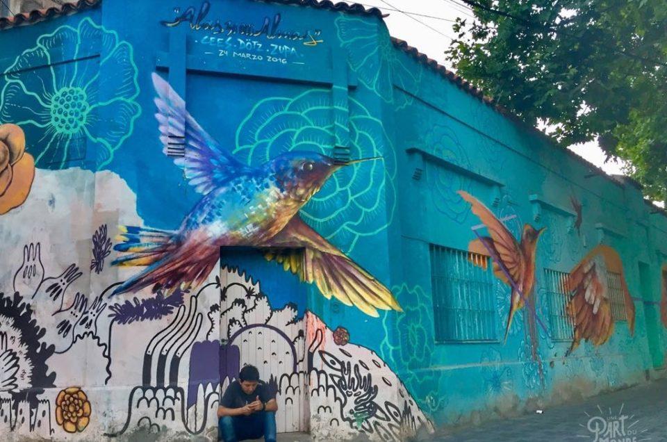 Mendoza : 2 jours à la découverte de la région viticole d'Argentine