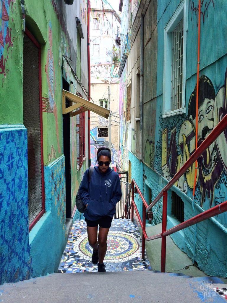 krystel street valparaiso