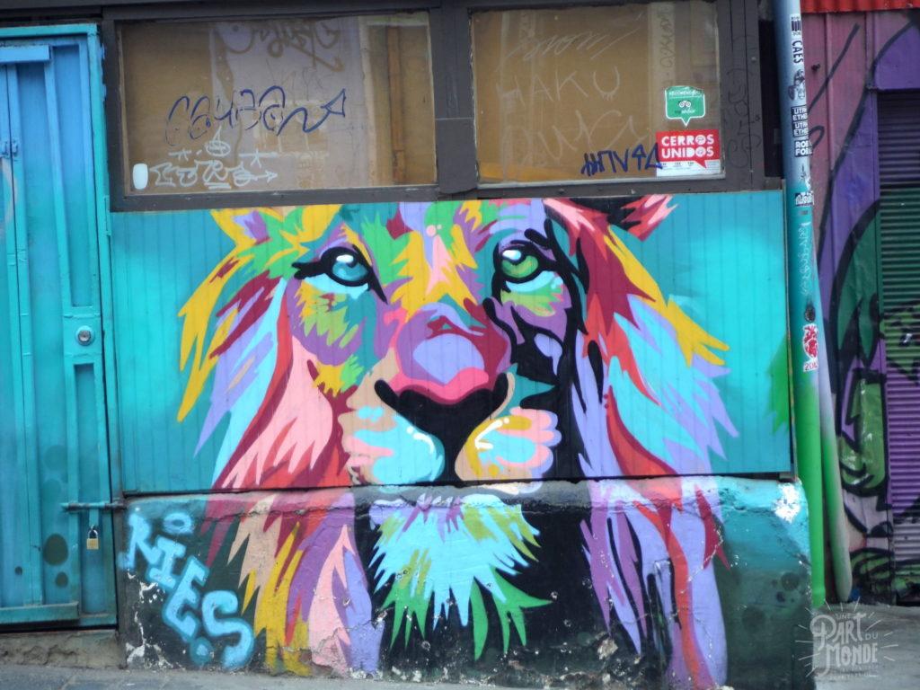 street art 8 valparaiso
