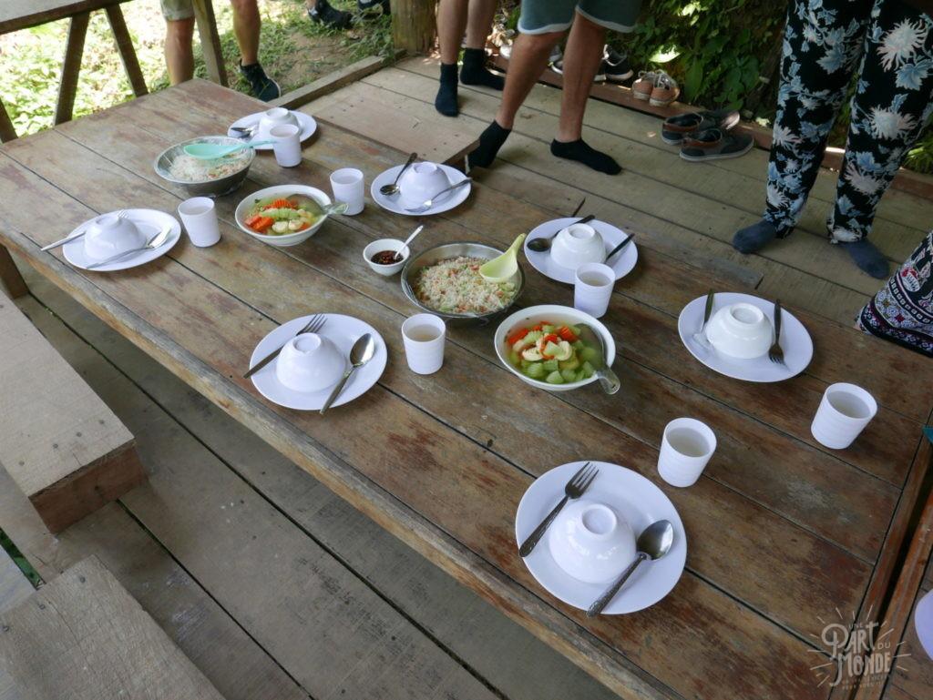 dejeuner elephant conservation center