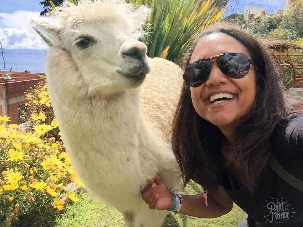 selfie alpaga copacabana