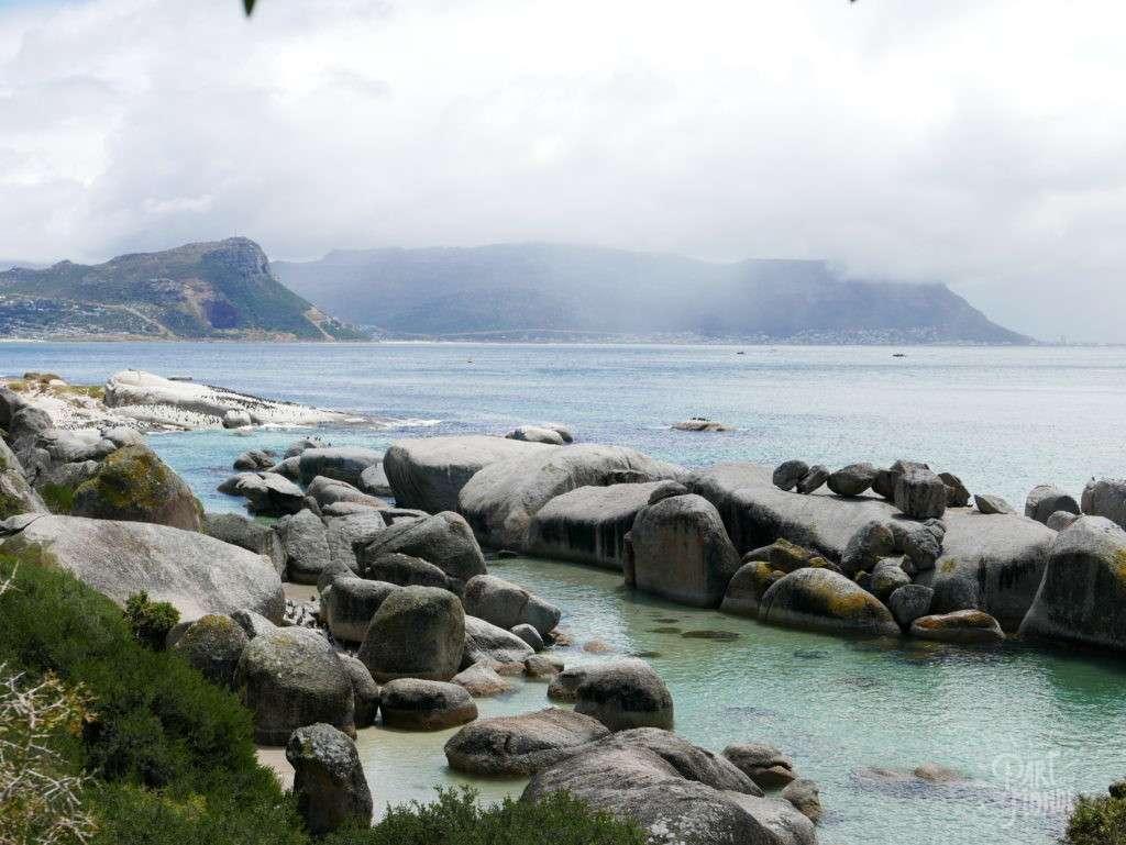 retour de mon tour du monde boulder's beach afrique du sud
