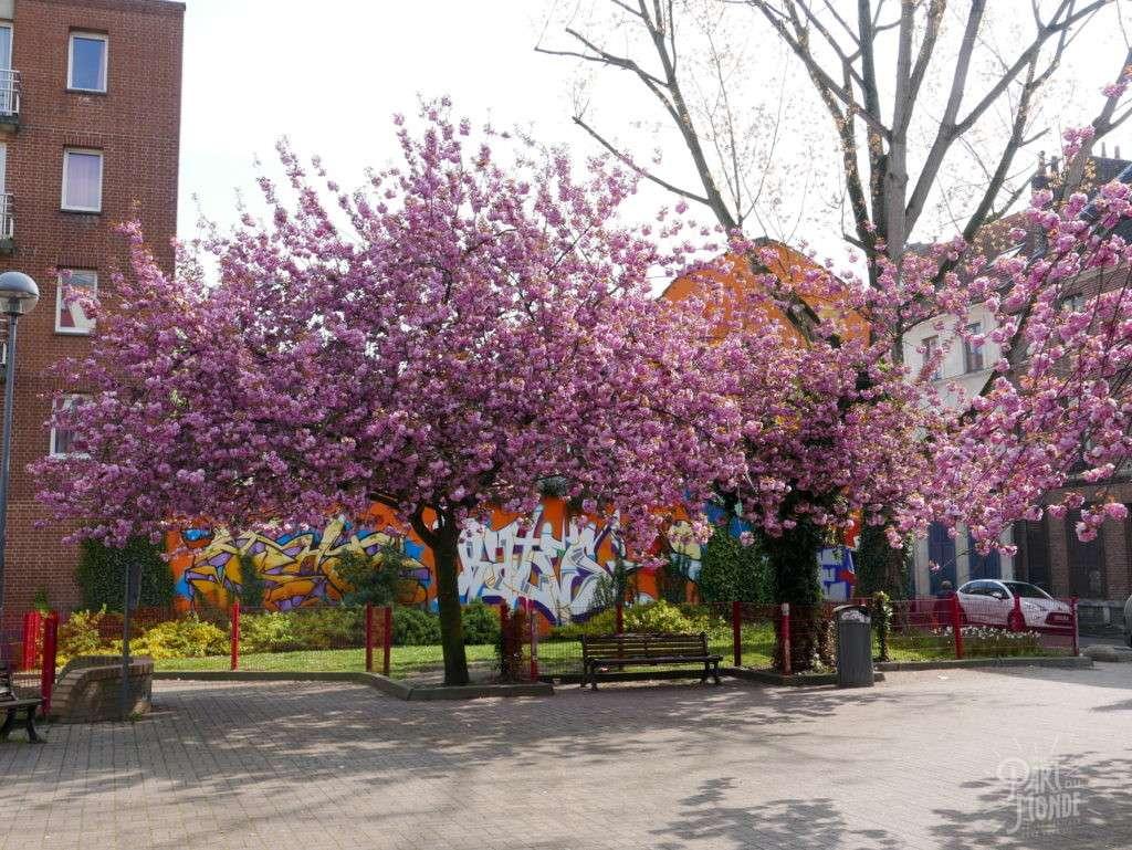 wazemmes lille arbres fleuris