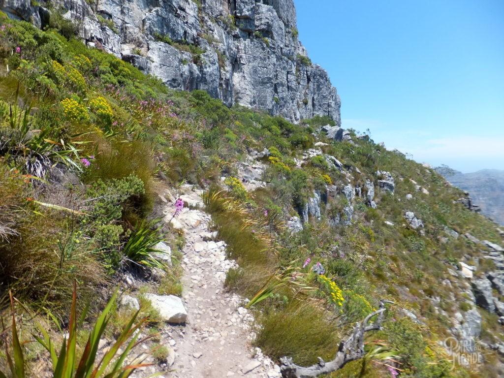 randonnée inda venster trail cape town