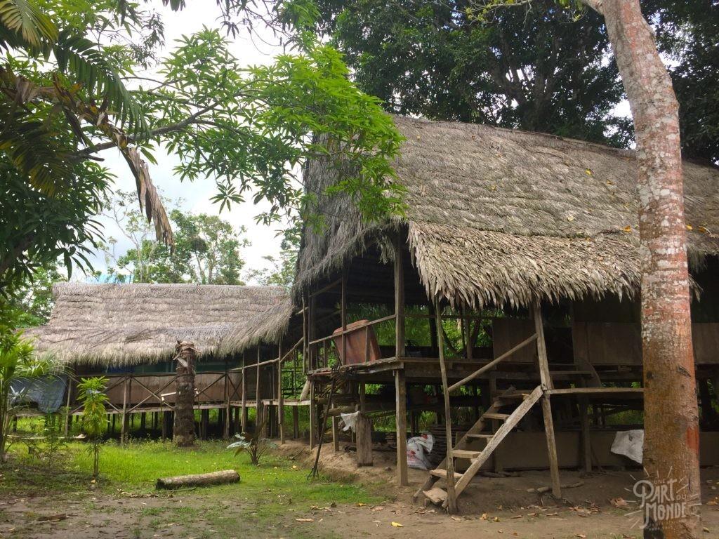 camp selva amzonie
