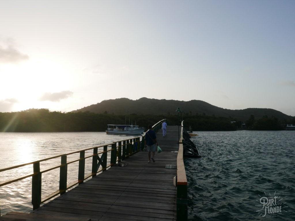 pont isla catalina