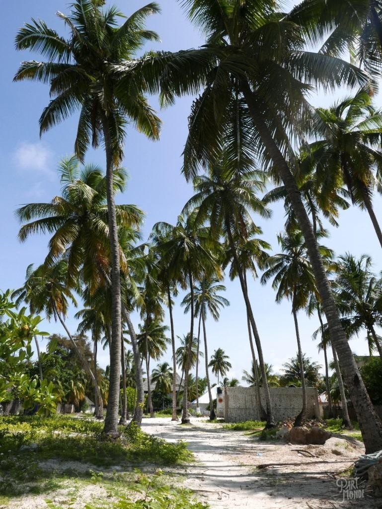 village jambiani