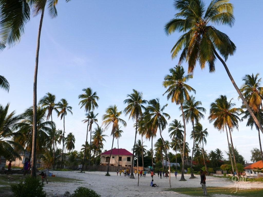 village paje palmiers