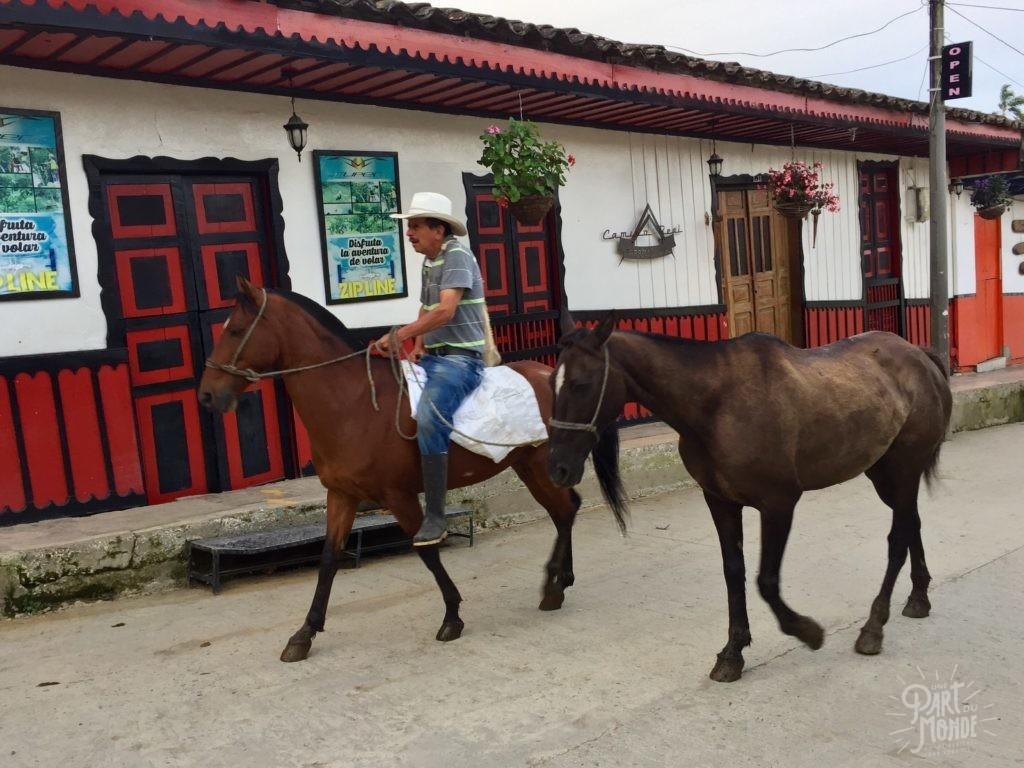 chevaux salento