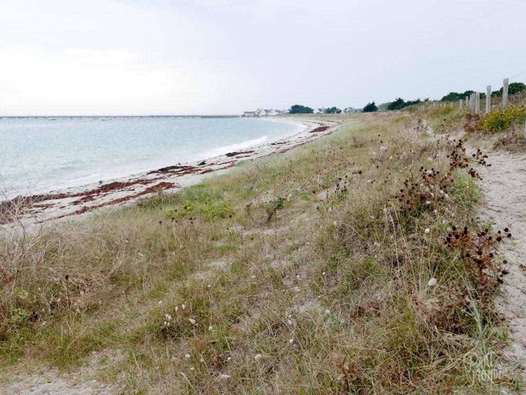 dune kerity